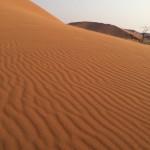 Dune45
