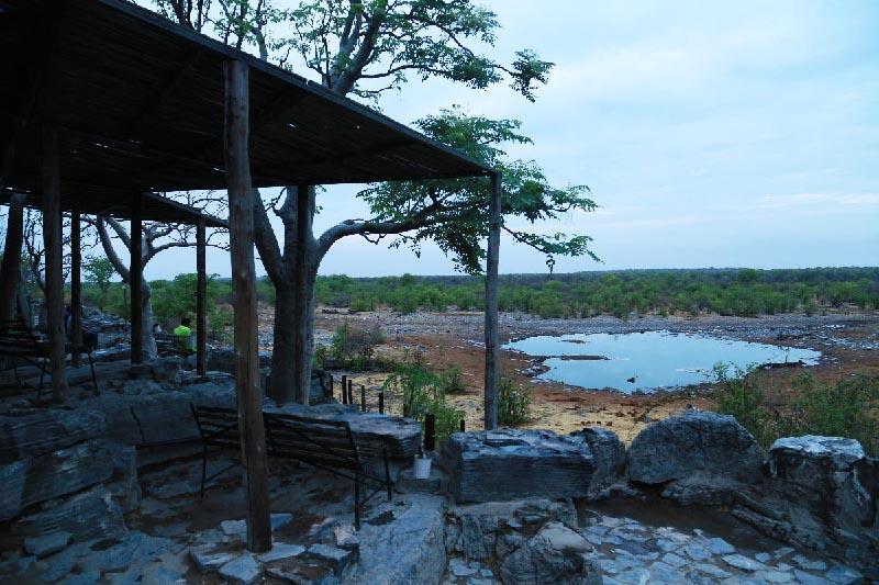 Halali水場 Etosha