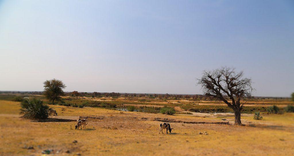 kavango NAMIBIA