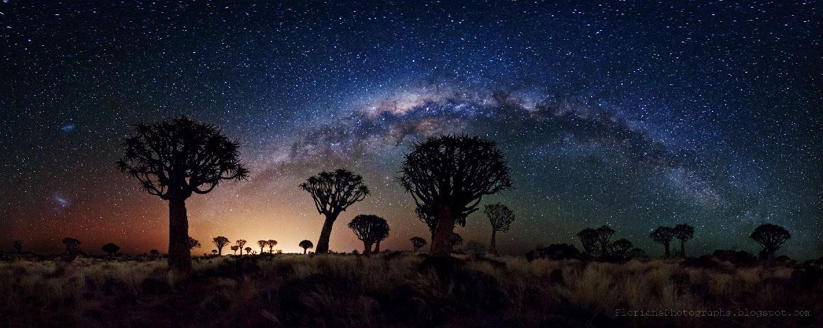 ナミビア星空