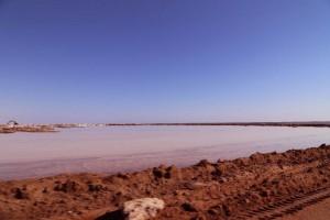 Walvisbay Salt Pan(塩湖)