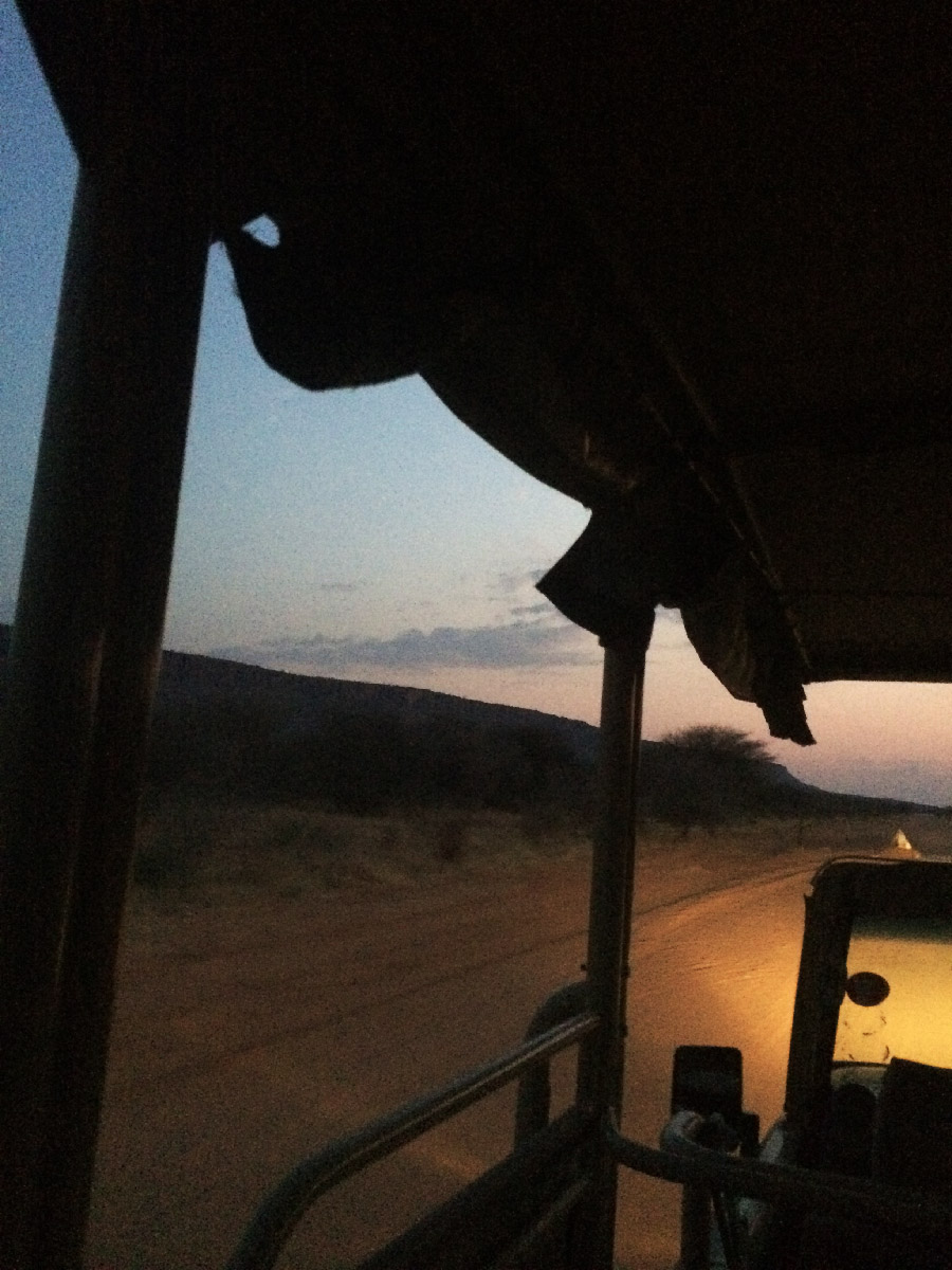 water berg game drive