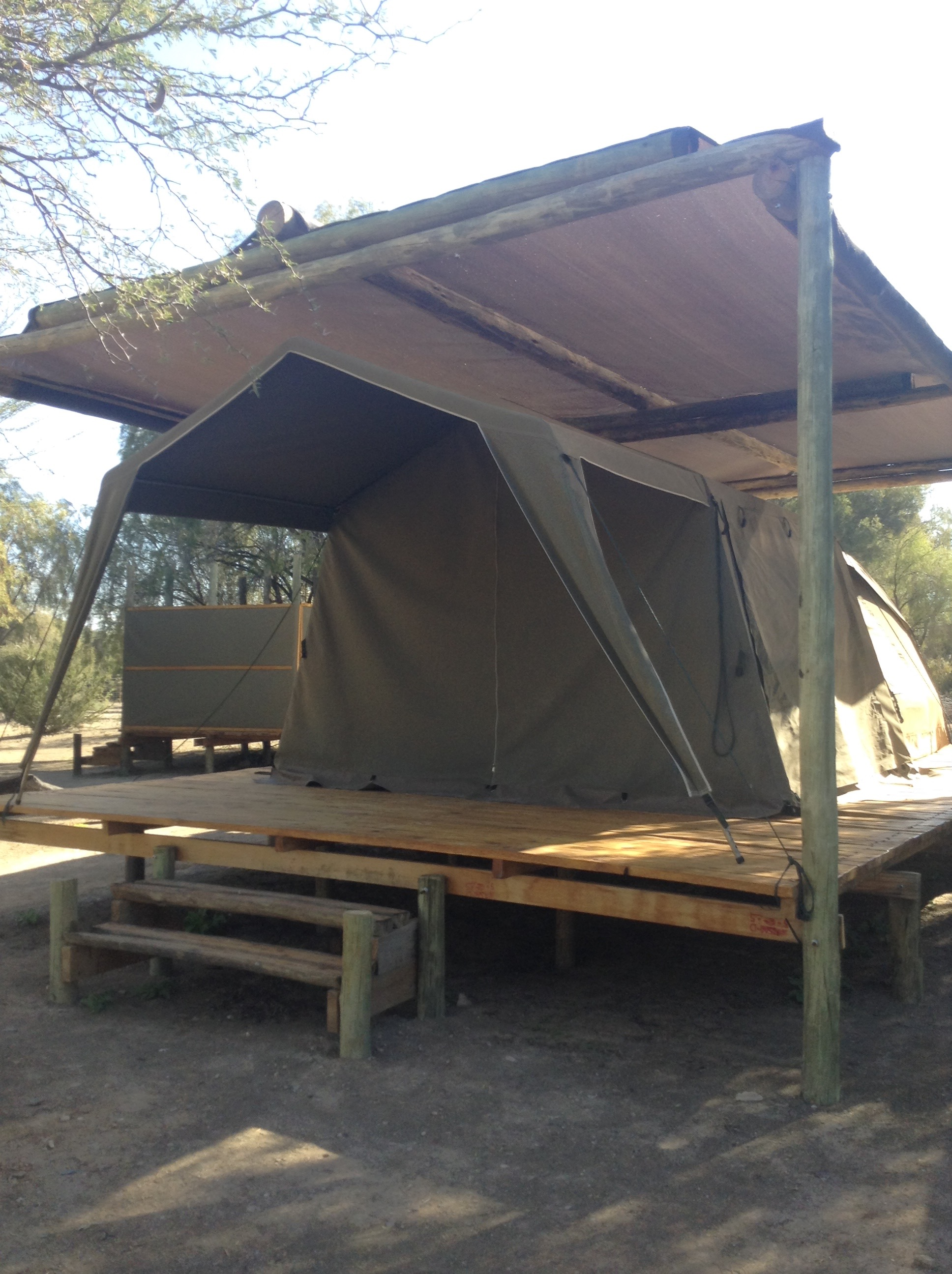 Tented(テンテッド)と呼ばれる常設テント。中はベッドもあり快適です。