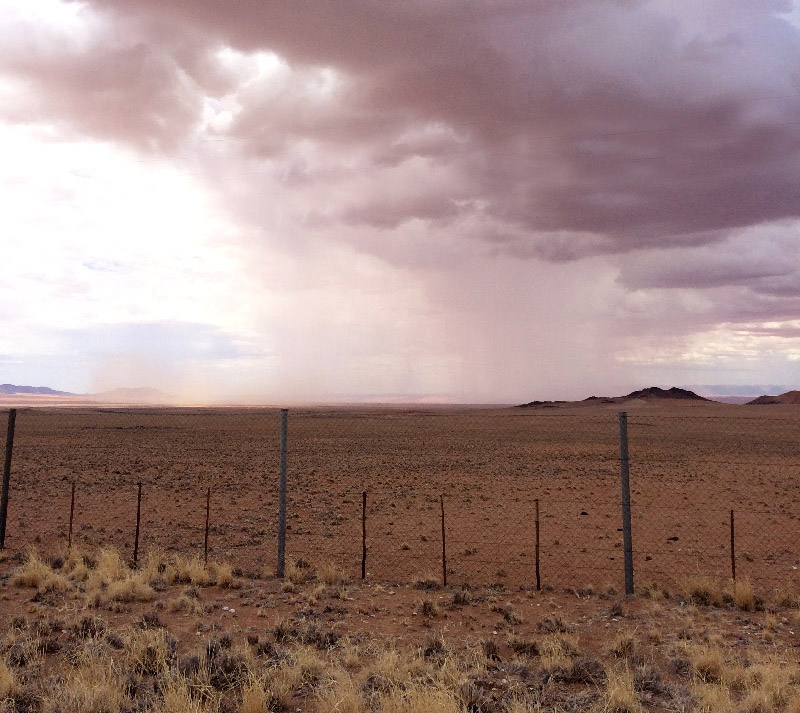 karahari カラハリ砂漠の雨