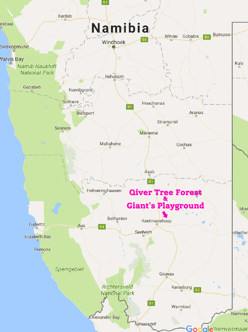 Qivertree Forest