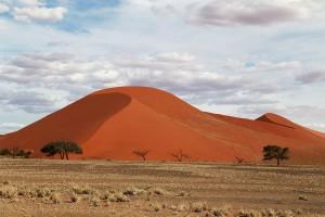 Dune 45(デューン45)