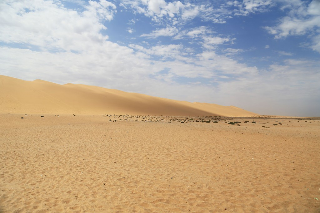 Dune7(デューン7)